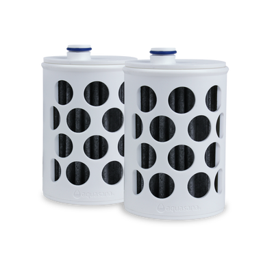 Clean Water Bottle Filter Replacement - 2 Pack